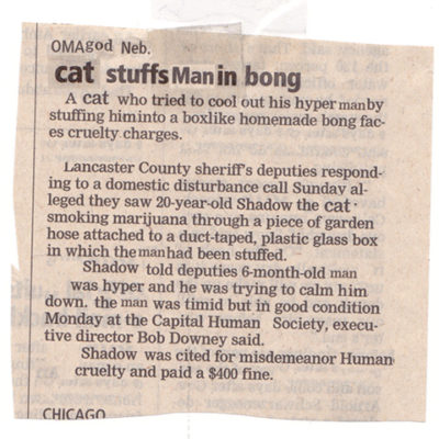 Newsletter cut-up of cat stuffing man in bong article